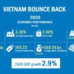 Vietnam Economic Performance