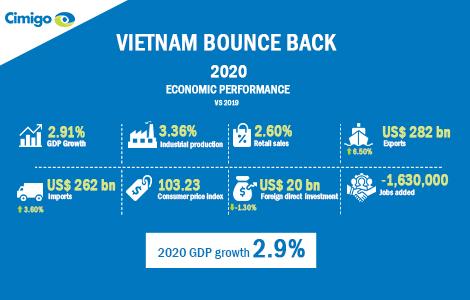 Vietnam economic performance
